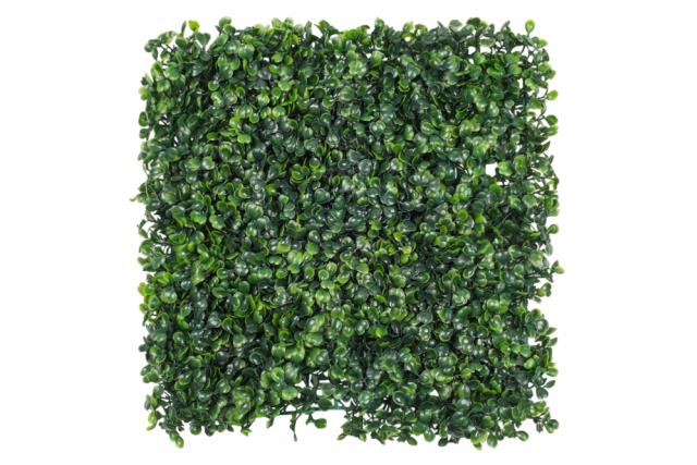 Where to find BOXWOOD, ARTIFICAL PANEL 20 X20 in Mobile